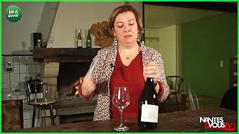 Approche Rurale avec Nantes&vousTV qui nous fait découvrir le vin de Loire 'COTEAUX DU LAYON' du CHATEAU DE LA MULLONIÈRE