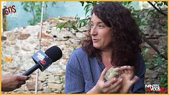 Nantes & Vous TV - Les savons naturels avec la savonnerie CRÜ - SOS & Vous